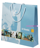 luxury paper bags with full color custom printing